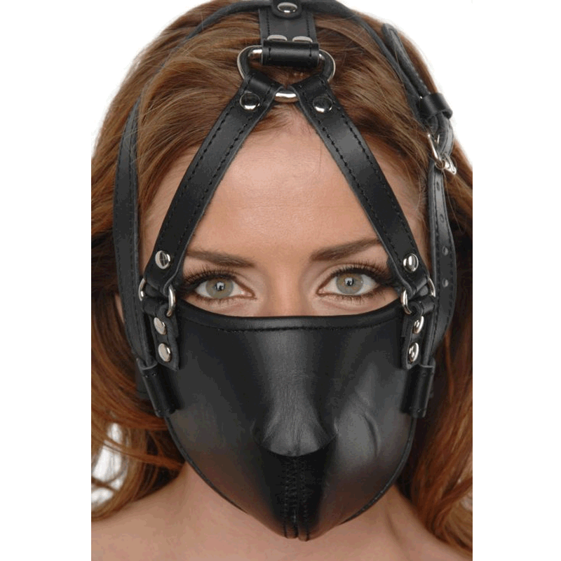 Face Harness 1